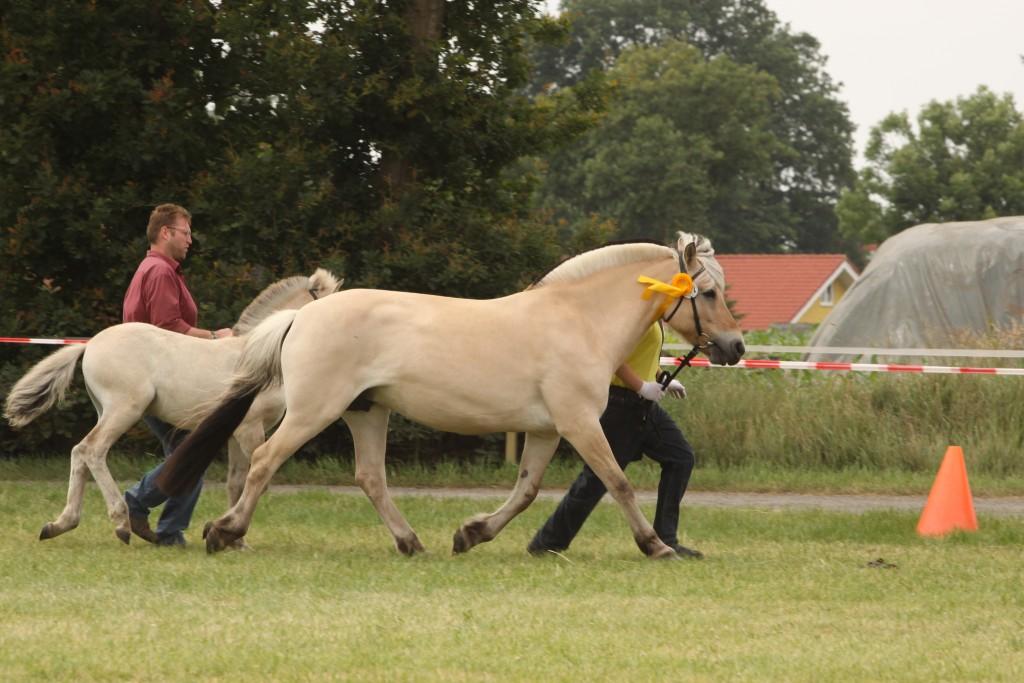 Nathanaell Hoppe und Silja Horsemannpreis u 4. der Landesmeisterschaft 10 - 13 co Schwöbel 09_002